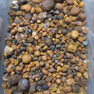 Bovine Gallstones for sale, Cow Gallstones for sale, Ox gallstones for sale