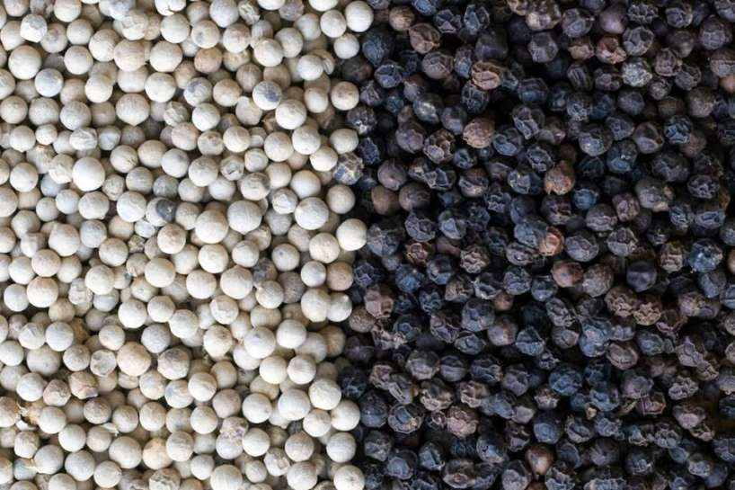 Black and white pepper wholesale | Buy black pepper online wholesales