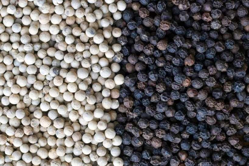 Black and white pepper wholesale | Buy black pepper online wholesales